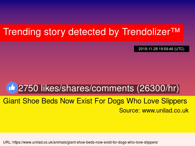 61084f7a1b97 Giant Shoe Beds Now Exist For Dogs Who Love Slippers